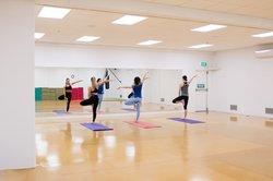 Dancers in the Manawatū gym dojo and dance studio