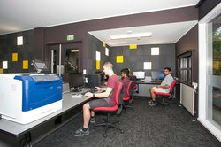 Computer lab in Colombo Hall with several students sitting at desks using desktop computers