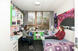 Two students sitting in a Colombo Hall single bedroom with a bed, desk and chair
