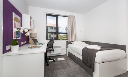Single bedroom in Massey Halls, Albany Campus, with a bed, study desk and chair