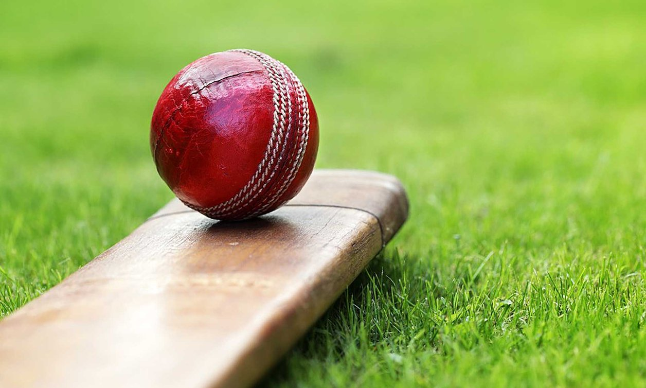 Close-up of cricket ball and bat