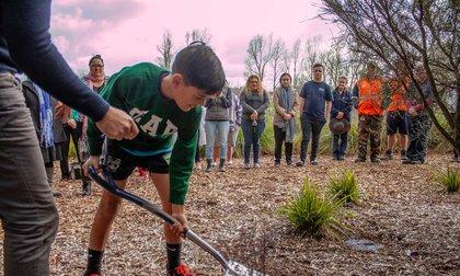 Young boy planting a tree at a ceremony celebrating Matariki