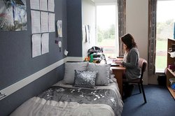 Person sitting at a desk, typing on a laptop in a single bedroom in Fergusson Hall