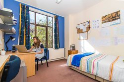 Student sitting at a desk using a laptop in a McHardy Hall's single bedroom