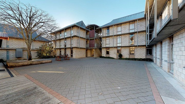 Exterior of City and Egmont Court accommodation with a paved courtyard, and seating under a deciduous tree, in the foreground