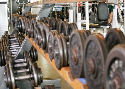Close-up of two rows of free weights in the gym